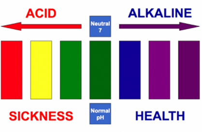 Acid—The Silent Killer; Alkalinity—The Key to Health